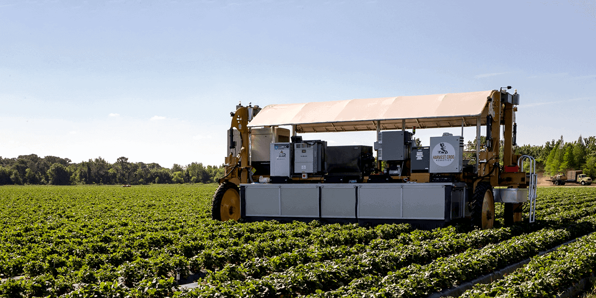 AI applications for agriculture