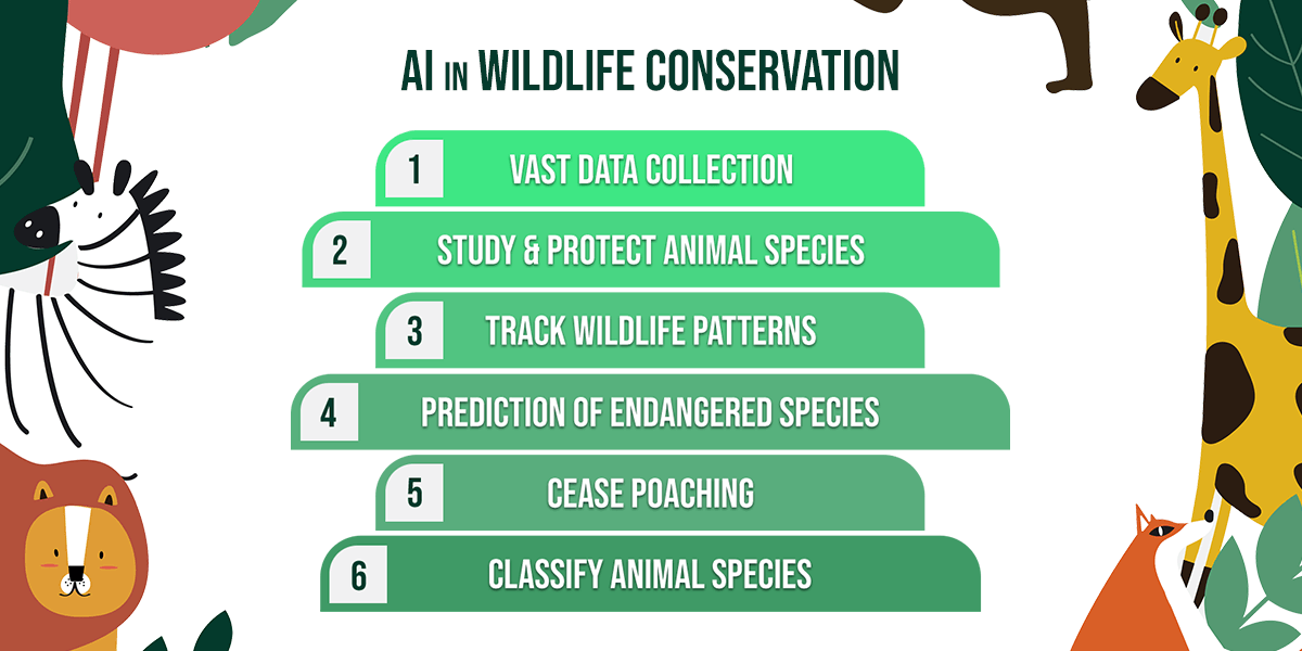 AI in wildlife conservation